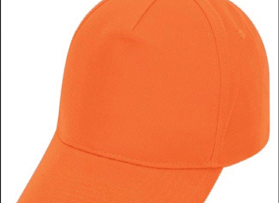 List of Orange Cap Winners: Who will win this time ?